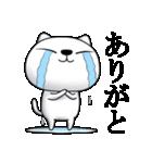 あおめにゃんこ(個別スタンプ:1)