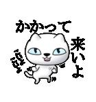 あおめにゃんこ(個別スタンプ:22)
