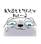 あおめにゃんこ(個別スタンプ:40)
