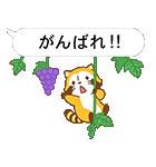 フルーツラスカル☆ ポップアップスタンプ(個別スタンプ:15)