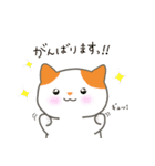 敬語の猫すたんぷ!(個別スタンプ:20)