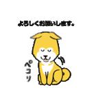 「まめ田ちゃめ助」柴犬スタンプ(個別スタンプ:06)