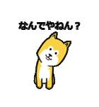 「まめ田ちゃめ助」柴犬スタンプ(個別スタンプ:08)