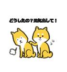 「まめ田ちゃめ助」柴犬スタンプ(個別スタンプ:09)