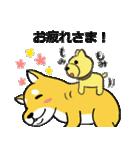 「まめ田ちゃめ助」柴犬スタンプ(個別スタンプ:12)