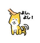 「まめ田ちゃめ助」柴犬スタンプ(個別スタンプ:13)