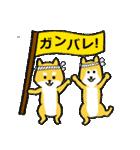 「まめ田ちゃめ助」柴犬スタンプ(個別スタンプ:15)
