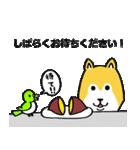 「まめ田ちゃめ助」柴犬スタンプ(個別スタンプ:21)