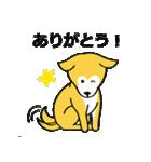 「まめ田ちゃめ助」柴犬スタンプ(個別スタンプ:23)