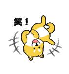 「まめ田ちゃめ助」柴犬スタンプ(個別スタンプ:24)