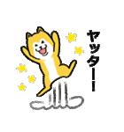 「まめ田ちゃめ助」柴犬スタンプ(個別スタンプ:25)