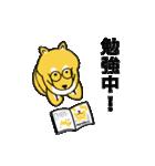 「まめ田ちゃめ助」柴犬スタンプ(個別スタンプ:26)