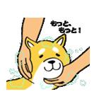 「まめ田ちゃめ助」柴犬スタンプ(個別スタンプ:27)