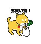 「まめ田ちゃめ助」柴犬スタンプ(個別スタンプ:29)
