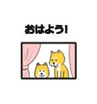 「まめ田ちゃめ助」柴犬スタンプ(個別スタンプ:30)