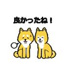 「まめ田ちゃめ助」柴犬スタンプ(個別スタンプ:33)