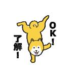 「まめ田ちゃめ助」柴犬スタンプ(個別スタンプ:34)