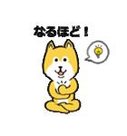「まめ田ちゃめ助」柴犬スタンプ(個別スタンプ:37)