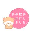 アライグマのぷーにゃん・夏編(個別スタンプ:19)
