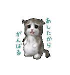 もふ猫もふう…動く!(個別スタンプ:06)