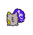 猫のスキャット日常生活(個別スタンプ:16)
