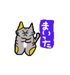 猫のスキャット日常生活(個別スタンプ:36)