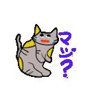 猫のスキャット日常生活(個別スタンプ:38)
