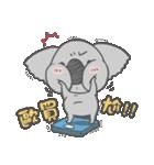 Koala KOA(個別スタンプ:07)
