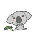 Koala KOA(個別スタンプ:10)