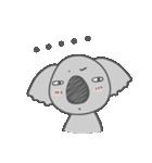 Koala KOA(個別スタンプ:19)