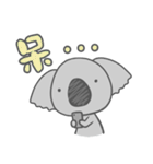 Koala KOA(個別スタンプ:30)