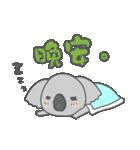 Koala KOA(個別スタンプ:35)