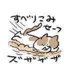 ゆるかわたのC!にゃんこ先輩2(個別スタンプ:5)
