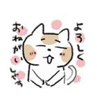 ゆるかわたのC!にゃんこ先輩2(個別スタンプ:21)