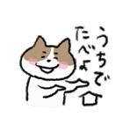 ゆるかわたのC!にゃんこ先輩2(個別スタンプ:37)