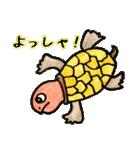 かわいい亀さんたち(個別スタンプ:24)