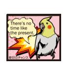 オカメインコ ピーちゃん アメコミ風(個別スタンプ:23)
