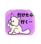 アニマルすたいる(個別スタンプ:11)