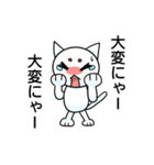 涙ネコ~白まろとふるえる?~(個別スタンプ:20)