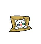 涙ネコ~白まろとふるえる?~(個別スタンプ:24)