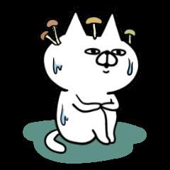 目つきが悪いネコ