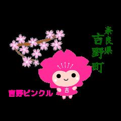 吉野ピンクル