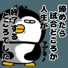 かわいいペンギンをどうぞ パート2