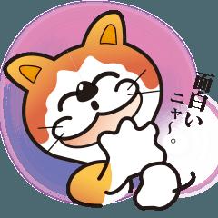 パフォーマンス猫キャラクター「ミー」4