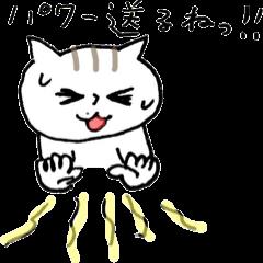 ねこ田ちゃん 6