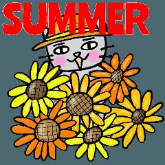 ねこくんの夏