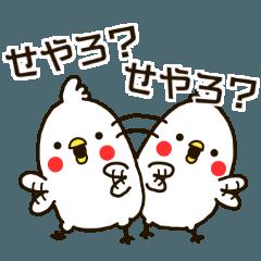 白いトリ。関西風味