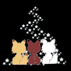 パンク猫3~梅雨&夏を過ごします~