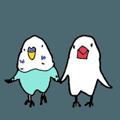 インコのヨシさんと文鳥スーさん