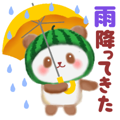 [LINEスタンプ] すいかパンダさん (1)